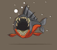 Piranha Fish Vector. Illustration Piranha Fish Vector on Gray background Stock Photos