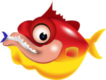 Piranha illustration Royalty Free Stock Photo