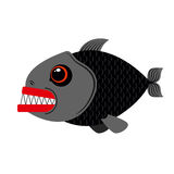 Piranha marine predator on white background.Terrible sea fish wi. Th sharp teeth. Scary eyes and sharp teeth Royalty Free Stock Photo