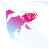 Piranha red illustration Royalty Free Stock Images