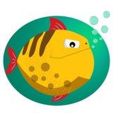 Piranha Rybia mieszkanie stylu wektoru ilustracja Tropikalna ryba, denna ryba Dennego koloru projekta płaska ryba Fotografia Stock