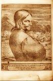 Pirata stock de ilustración