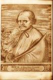 Pirata ilustración del vector