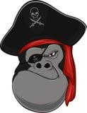 Pirata do gorila Imagens de Stock