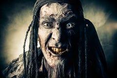 Pirata uśmiech Obraz Royalty Free