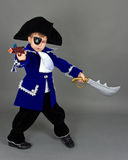 The  pirate Stock Photography