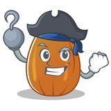 Pirate almond nut character cartoon Stock Images