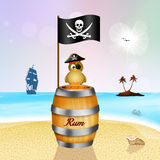 Pirate bird on bottle rum Royalty Free Stock Images