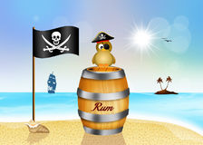 Pirate bird on bottle rum Royalty Free Stock Photos