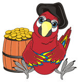 Pirate bird and money. Pirate red parrot in black hat sit with wooden barrel with many cents Royalty Free Stock Photography