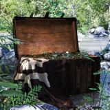 Pirate chest discovered near a forest pond filled with treasure coins . royalty free stock photos