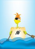 Pirate chicken. Chicken pirate in his own egg royalty free stock image