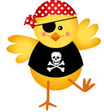 Pirate Chicken Stock Image