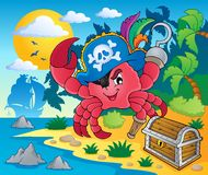 Pirate crab theme image 2. Vector illustration Royalty Free Stock Photo