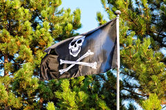 Pirate flag. With green trees in the background stock image