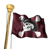 Pirate flag. This is a Pirate flag Stock Images