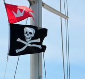 Pirate flag on mast Stock Photography