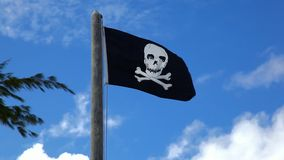 Pirate flag on the pole Royalty Free Stock Photo
