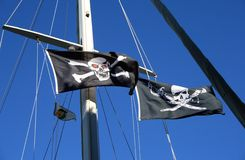 Pirate Flags. Hoisted in the air Stock Photography