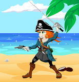 Pirate girl on the beach Stock Image