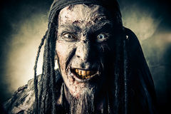 Free Pirate Grin Royalty Free Stock Image - 80073856