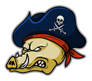 Pirate Hogs Royalty Free Stock Photography