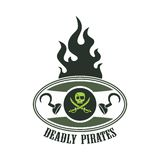 Pirate icon art Royalty Free Stock Photos