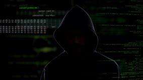 Pirate informatique anonyme volant l'information d'entreprise secrète, attaque de système de données banque de vidéos