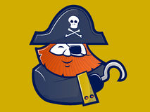 Pirate Mascot Character Royalty Free Stock Images