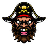 Pirate Mascot Stock Images