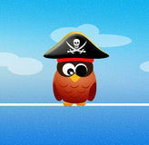 Pirate owl Royalty Free Stock Photo