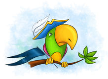 Pirate parrot. Naughty colorful parrot in a pirate hat sitting on a tree branch Stock Photography