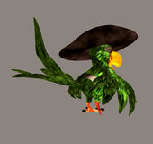 Pirate Parrot Stock Photos