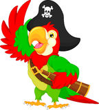 Pirate parrot cartoon Royalty Free Stock Photo