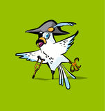 Pirate parrot cartoon. Vector illustration Royalty Free Stock Images