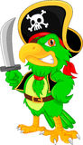 Pirate parrot cartoon Stock Images