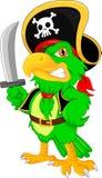 Pirate parrot cartoon. Vector illustration of pirate parrot cartoon Stock Images