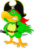Pirate parrot cartoon Royalty Free Stock Images