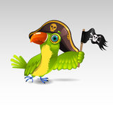 Pirate parrot. Illustration of cartoon pirate parrot Stock Images