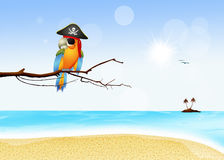 Pirate parrot on island Stock Photo