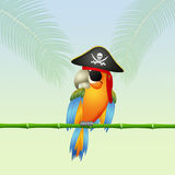 Pirate parrot on island. Illustration of pirate parrot on island Royalty Free Stock Image