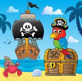 Pirate Parrot On Treasure Chest Topic 4 Stock Images