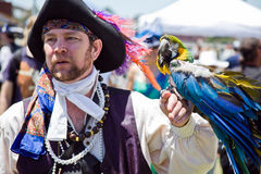 Pirate & Parrot At Pirate Festival Stock Photos
