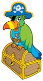 Pirate parrot sitting on chest Royalty Free Stock Photo