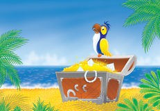 Pirate parrot and treasure chest. Pirate parrot sits on a treasure chest that stands on a tropical beach Royalty Free Stock Photos