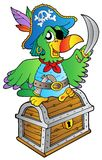Pirate parrot on treasure chest. Illustration Stock Images
