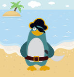 Pirate Penguin Royalty Free Stock Images