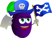 Pirate plum with blank paper and pirate flag Stock Photos