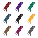 Pirate`s parrot icon in black style isolated on white background.  Royalty Free Stock Photography