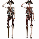 Pirate Skeleton Stock Photography